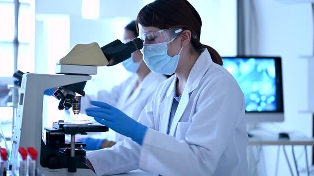 looking through a microscope. female researchers working in a research facility. - 顕微鏡点の映像素材/bロール