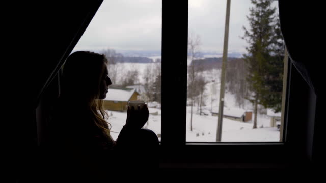 looking through snowy windows - cardigan sweater stock videos & royalty-free footage