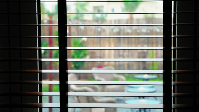 Looking through the Wooden Blinds