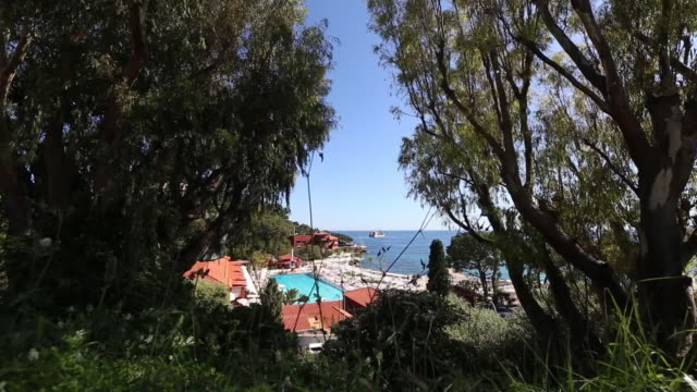 looking through trees to the monte-carlo beach hotel swimming pool and mediterranean sea - monte carlo stock-videos und b-roll-filmmaterial