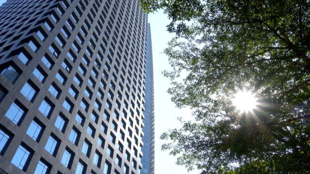 looking up corporate building - directly below stock videos & royalty-free footage