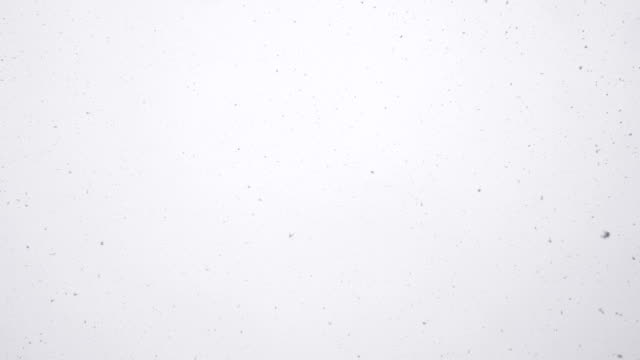 looking up in the sky at snow falling - mgost stock videos and b-roll footage
