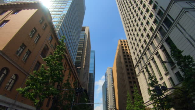 looking up view of skyscraper - inquadratura dal basso video stock e b–roll