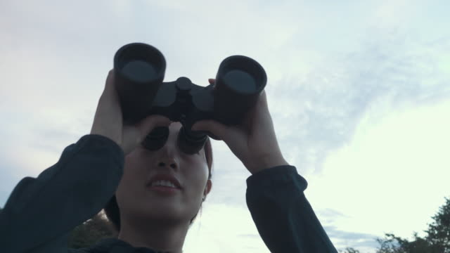 looking - binoculars stock videos & royalty-free footage