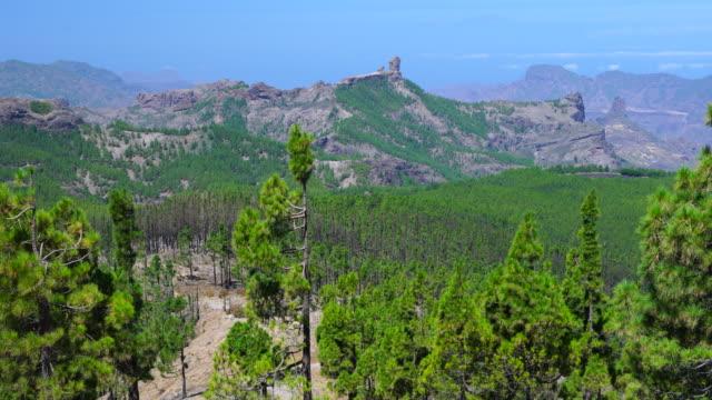 lookout, mirador pico de las nieves, roque nublo, tejeda, gran canaria island, canary islands, spain, europe - グランカナリア点の映像素材/bロール