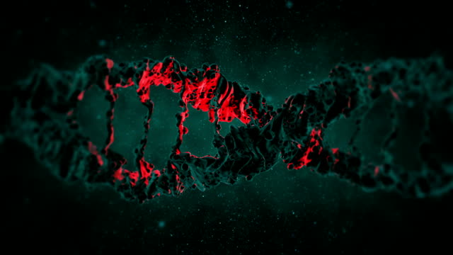 dna loop animation - chromosome stock videos and b-roll footage