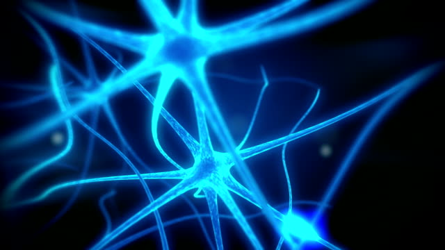 neurone loop animazione medica - biomedical animation video stock e b–roll