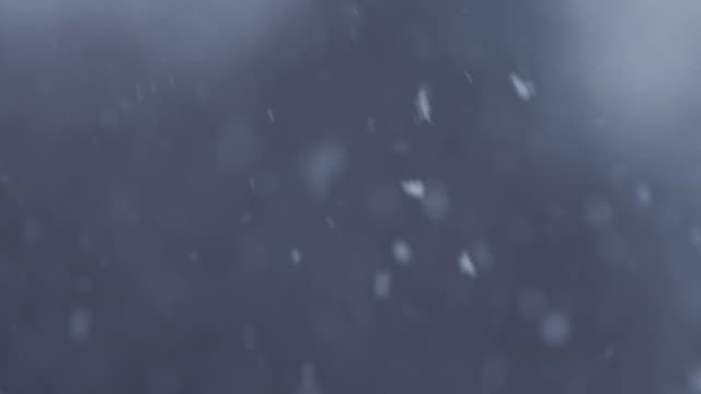 loop of real snow flakes - snowing stock videos and b-roll footage