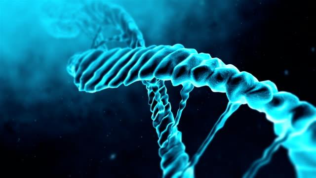 dna loop - mutazione genetica video stock e b–roll