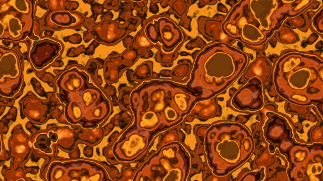 loopable cells. loopable abstract fractal background in golden colors. concepts: microbiology, cells, fractal, abstract, backgrounds. - deformed stock videos & royalty-free footage
