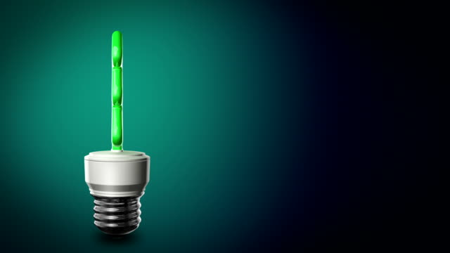 loopable cfl bulb in the shape of a christmas tree - compact fluorescent light bulb stock videos & royalty-free footage