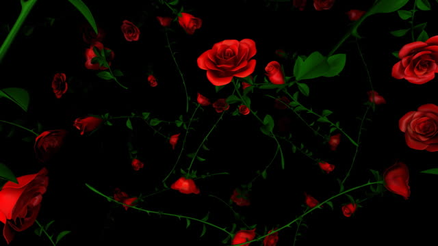 loopable, falling roses - valentines background stock videos & royalty-free footage
