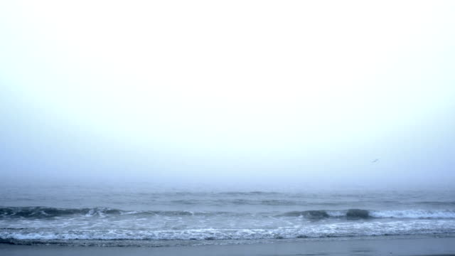 loopable foggy ocean - fog stock videos & royalty-free footage