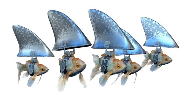 loopable, goldfishes disguised as sharks - illusion stock videos & royalty-free footage