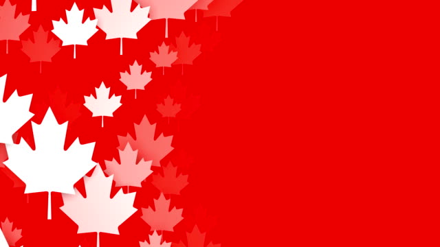 loopable maple leafs over red background, canadian flag, copy space - maple leaf stock videos and b-roll footage