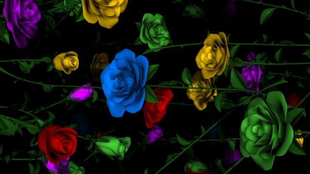 loopable, multicolor roses falling - petal stock videos & royalty-free footage