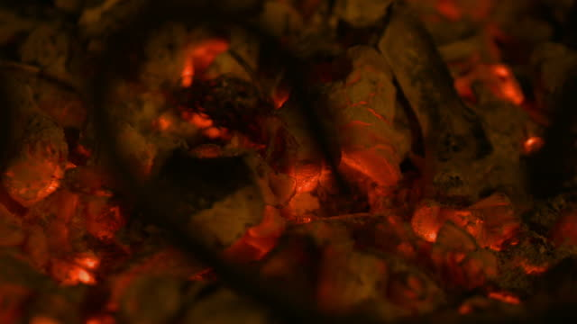 loopable video of embers in 4k - stick plant part stock videos & royalty-free footage