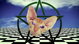 Looped seamless footage for your event, concert, stage design, title, presentation, site, DVD, designers, editors and VJ s for led screens and projection mapping show. Satan's angry cat smiles.