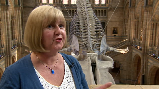Lorraine Cornish Head of Conservation at the Natural History Museum describes her reaction when the new centre piece of the Museum 'Hope' the Blue...