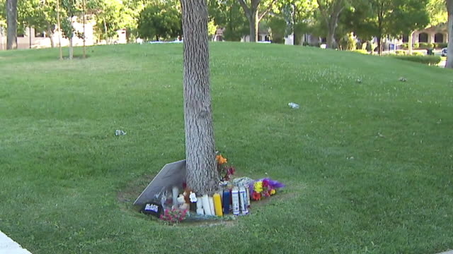 ktla los angeles ca us candles flowers and signs left to protest the death of robert fuller a 24year old black man who was found hanging from a tree... - lynching stock videos & royalty-free footage