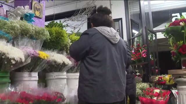 ktla los angeles ca us customers buying flowers at flower district to celebrate valentine's day on friday february 14 2020 - flower shop stock videos & royalty-free footage