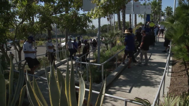 vídeos y material grabado en eventos de stock de los angeles, ca, u.s. dodgers fans waiting outside stadium for opening team store, on thursday, october 29, 2020. - fan palm tree