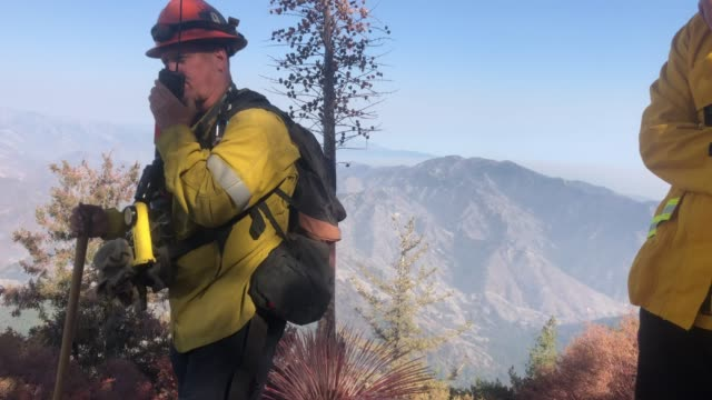 los angeles county fire department captain david gillotte radios on a ridge during the bobcat fire in the angeles national forest on september 23... - エンジェルス国有林点の映像素材/bロール