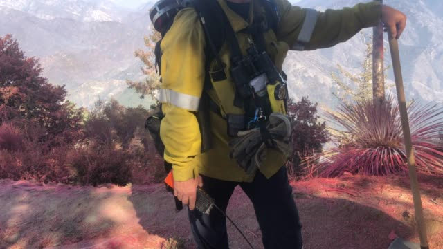 los angeles county fire department captain david gillotte speaks about firefighter mental health during the bobcat fire in the angeles national... - pasadena kalifornien stock-videos und b-roll-filmmaterial