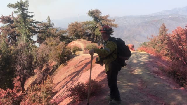 los angeles county fire department captain david gillotte works on a ridge during the bobcat fire in the angeles national forest on september 23 near... - pasadena kalifornien stock-videos und b-roll-filmmaterial