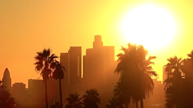 los angeles sunset - hd stock video - palm stock videos & royalty-free footage