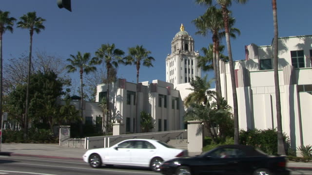 los angelescity hall of beverly hills in los angeles united states - fan palm tree stock videos & royalty-free footage