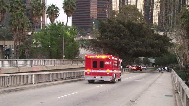 los angelesview of an ambulance passing in los angeles united states - fan palm tree stock videos & royalty-free footage