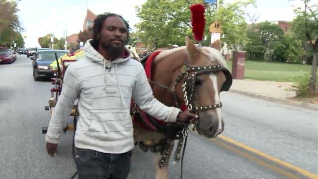 los arabbers, vendedores tradicionales de frutas y verduras en baltimore, son conocidos por cargar su mercaderia en carros tirados por caballos... - fruta stock videos & royalty-free footage