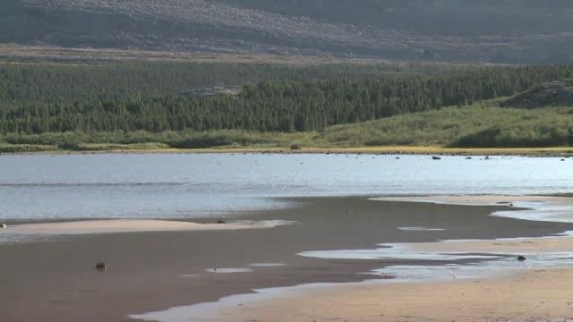stockvideo's en b-roll-footage met los cientificos estan buscando pistas en el artico canadiense de una posible catastrofe del calentamiento global el derretimiento del permafrost una... - roca