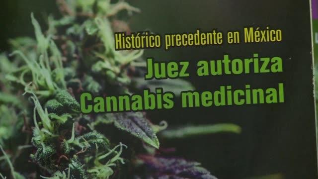 Los diputados mexicanos aprobaron el viernes una ley que permitira el uso medicinal y científico de la marihuana una iniciativa del gobierno de...