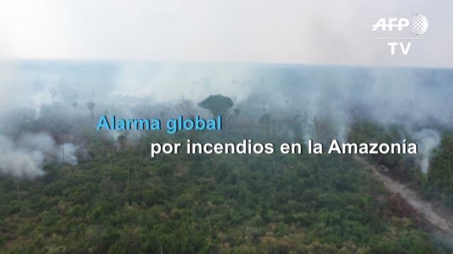 los incendios en la amazonia generaron preocupacion y alarma a nivel global pero sobre todo llamaron la atencion sobre la deforestacion en la mayor... - planeta stock videos & royalty-free footage
