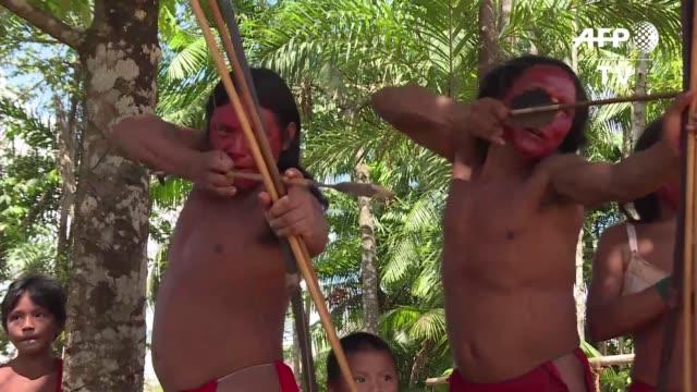 los indigenas waiapi una antigua tribu que vive en la selva amazonica brasilena prometen defender sus tierras ante el temor de que sean invadidas por... - tribu sudamericana video stock e b–roll