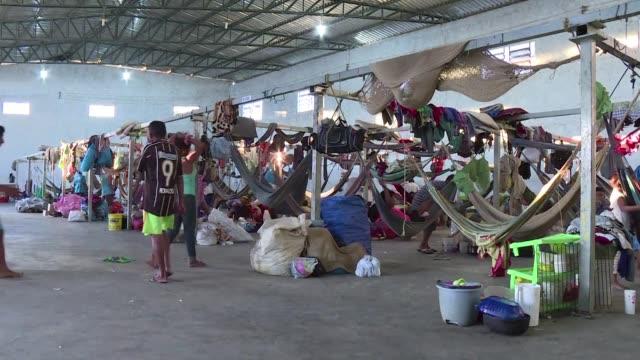 los indigenas waraos tambien huyen de venezuela sumida en una crisis economica y política - etnia stock videos and b-roll footage