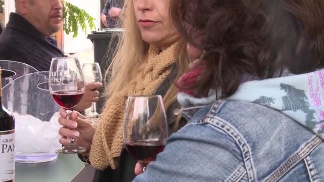 vídeos de stock, filmes e b-roll de los vinateros chilenos desarrollan una estrategia para subir alrededor del 20% el precio de sus vinos en el mercado internacional en los proximos... - vino