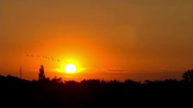 loss of wildlife in uk; england: lincolnshire: boston: rspb frampton marsh: ext / dusk sunset - setting sun - over frampston marsh nature reserve... - sunset stock videos & royalty-free footage