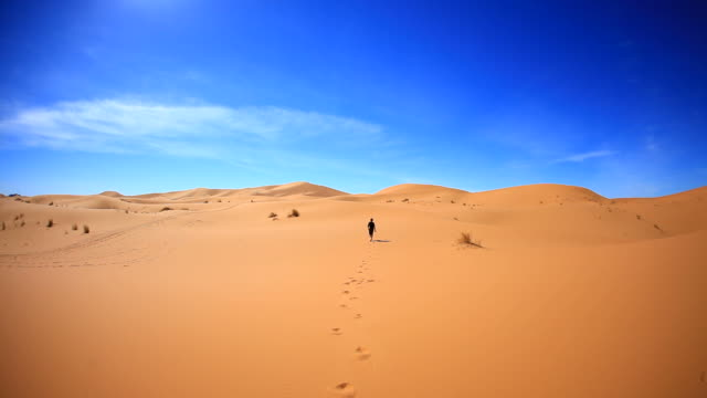 Lost Man Walking in the Sahara Desert, HD Video