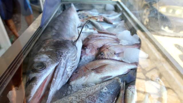 vídeos de stock e filmes b-roll de lots of freshly caught fish displayed in front of the restaurant - peixe congelado