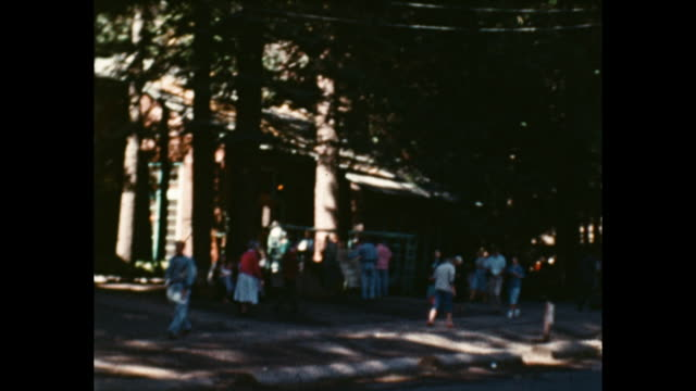 lots of people in front of a wooden building surrounded by tall pine trees inside yosemite national park - yosemite national park stock videos & royalty-free footage