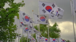 Lots of South Korean flags waving on a wind