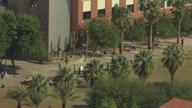 ws aerial lots of students on campus lawn at university of arizona / phoenix, arizona, united states  - 顕花植物点の映像素材/bロール