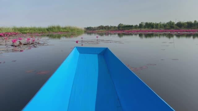 vídeos de stock, filmes e b-roll de lago lotus com barco - passear sem destino