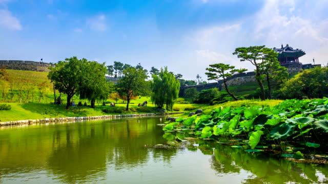 vídeos y material grabado en eventos de stock de lotus leaf on the pond and pavilion at the banghwasuryujeong(korea treasure 1709) - grupo mediano de animales