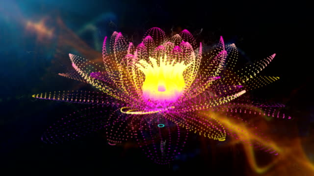 lotus - mandala stock videos & royalty-free footage