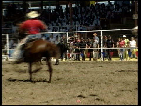 Angola maximum security prisoners perform in prison rodeo Prisoners sat at table in arena as bull released and charges and upends table / bull...
