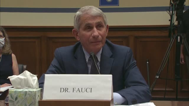 louisiana congressman steve scalise asks infectious disease expert anthony fauci at a coronavirus select investigative subcommittee hearing about... - united states congress stock videos & royalty-free footage